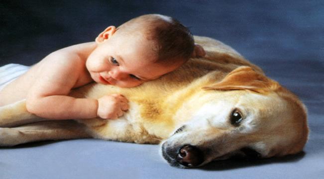 Hayvanları İnsanlardan Ayıran Temel Özellik Nedir